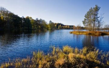 Картинка природа реки озера озеро небо деревья пейзаж
