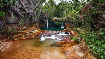 Картинка природа водопады кусты вода камни