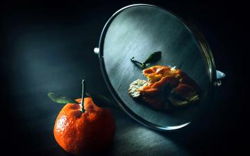 обоя еда, цитрусы, мандарин, зеркало
