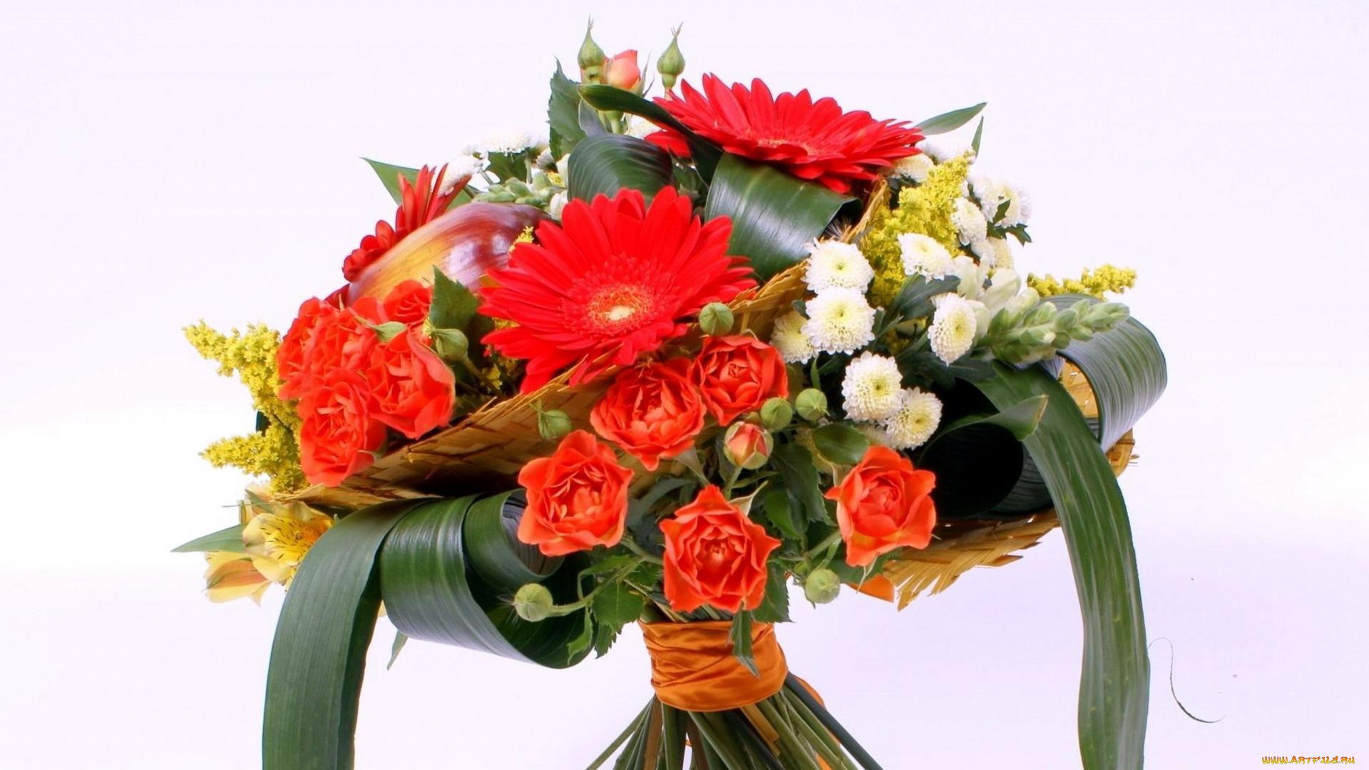Картинки с цветами гладиолусов хризантем и герберов роз, картинка