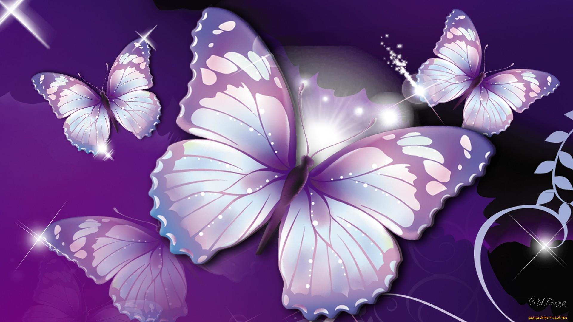 Красавица с бабочкой загрузить