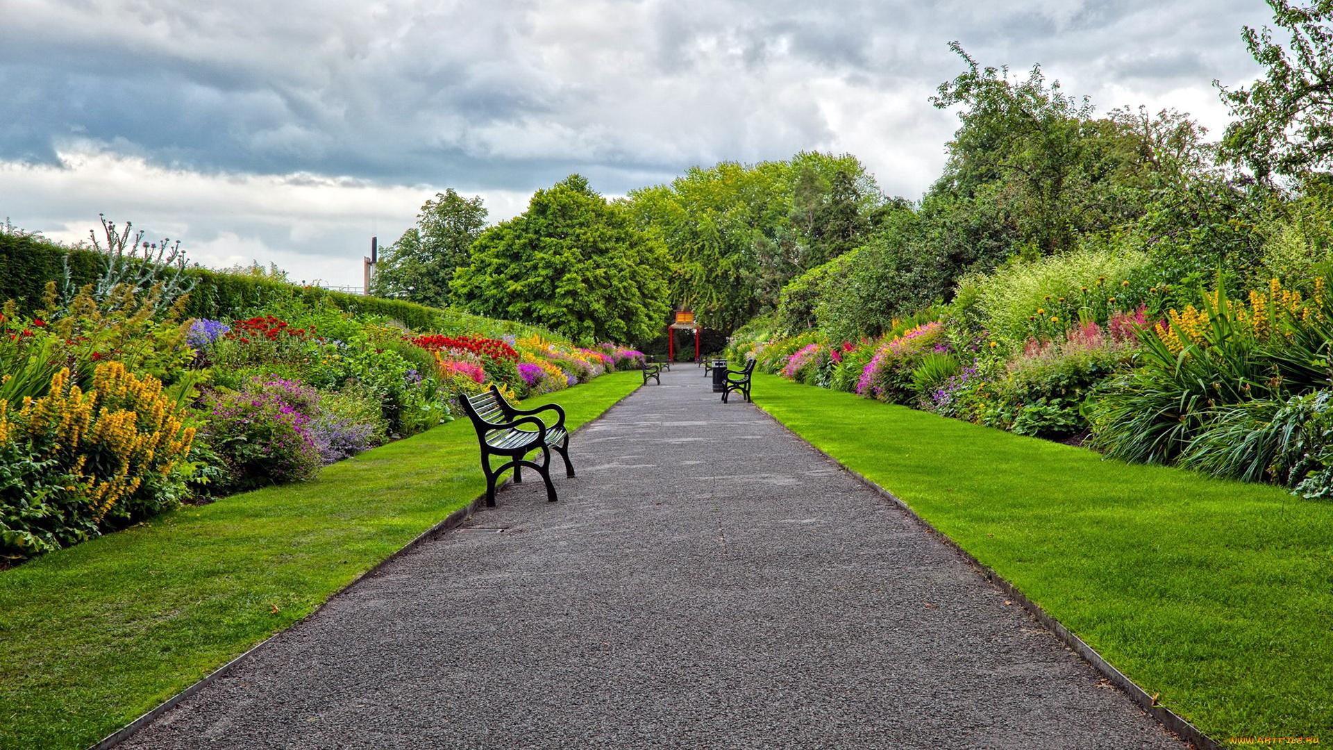 Цветы вдоль тропинки, Англия онлайн