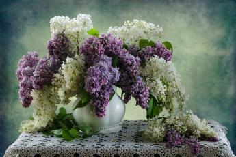 обоя цветы, сирень, салфетка, ветки