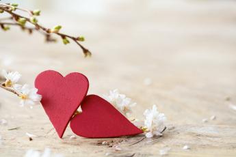 обоя праздничные, день святого валентина,  сердечки,  любовь, сердечки, ветки, цветы, весна, почки