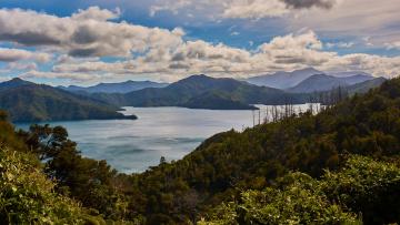 Картинка природа реки озера пейзаж