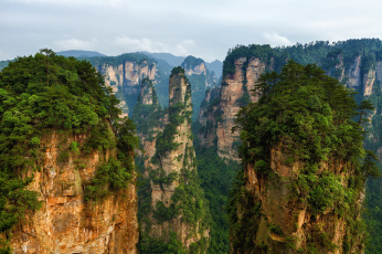 Картинка природа горы лес пандора утесы