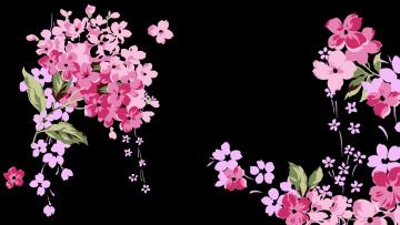 Картинка векторная+графика цветы фон