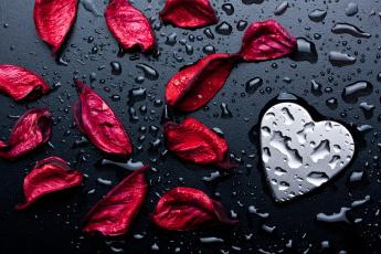 обоя праздничные, день святого валентина,  сердечки,  любовь, сердечко, капли, лепестки