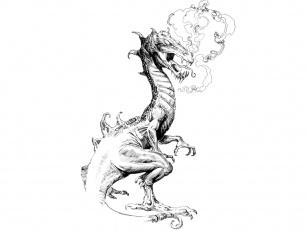 Картинка фэнтези драконы