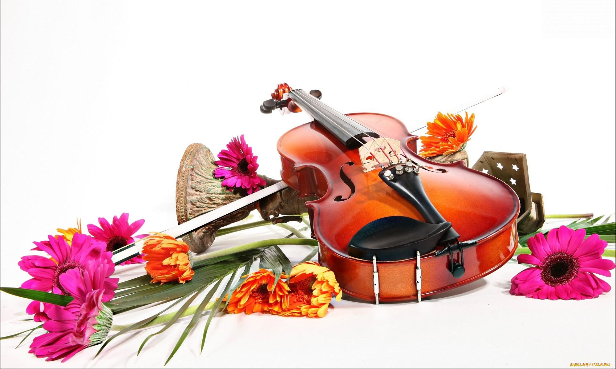 Сайты открыток музыкальных