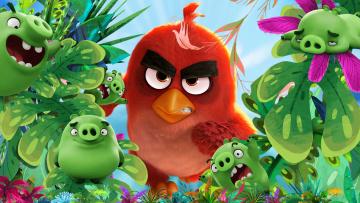 обоя мультфильмы, the angry birds movie, персонажи