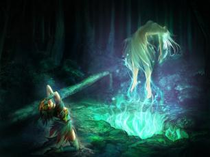 обоя фэнтези, маги,  волшебники, лес, ночь, магия, волшебница, ритуал