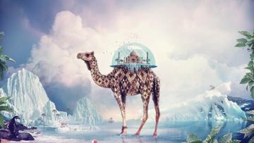 обоя fantasy camel, фэнтези, фотоарт, фэнтази