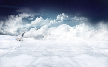 обоя разное, компьютерный дизайн, белый, полярный, облака, снег, планета, медведь