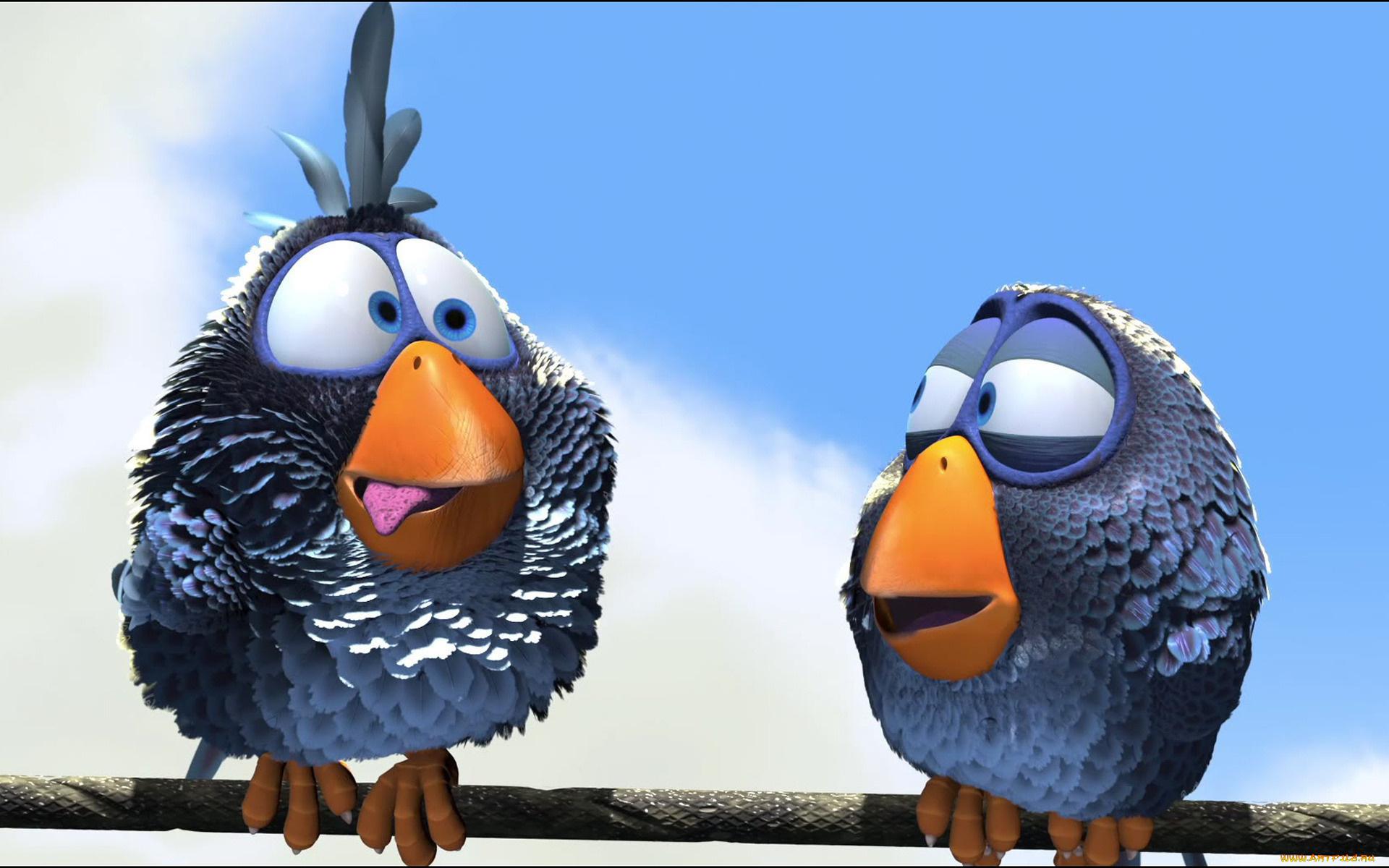 Картинки приколы, смешные картинки птиц из мультфильмов