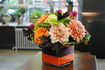 Картинка цветы букеты +композиции георгины букет циннея