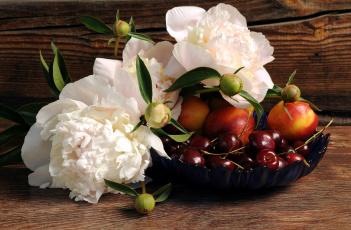 обоя еда, фрукты,  ягоды, пионы, черешня, нектарины