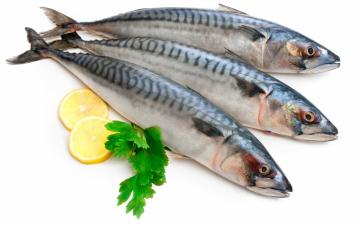 Картинка еда рыба +морепродукты +суши +роллы скумбрия петрушка лимон
