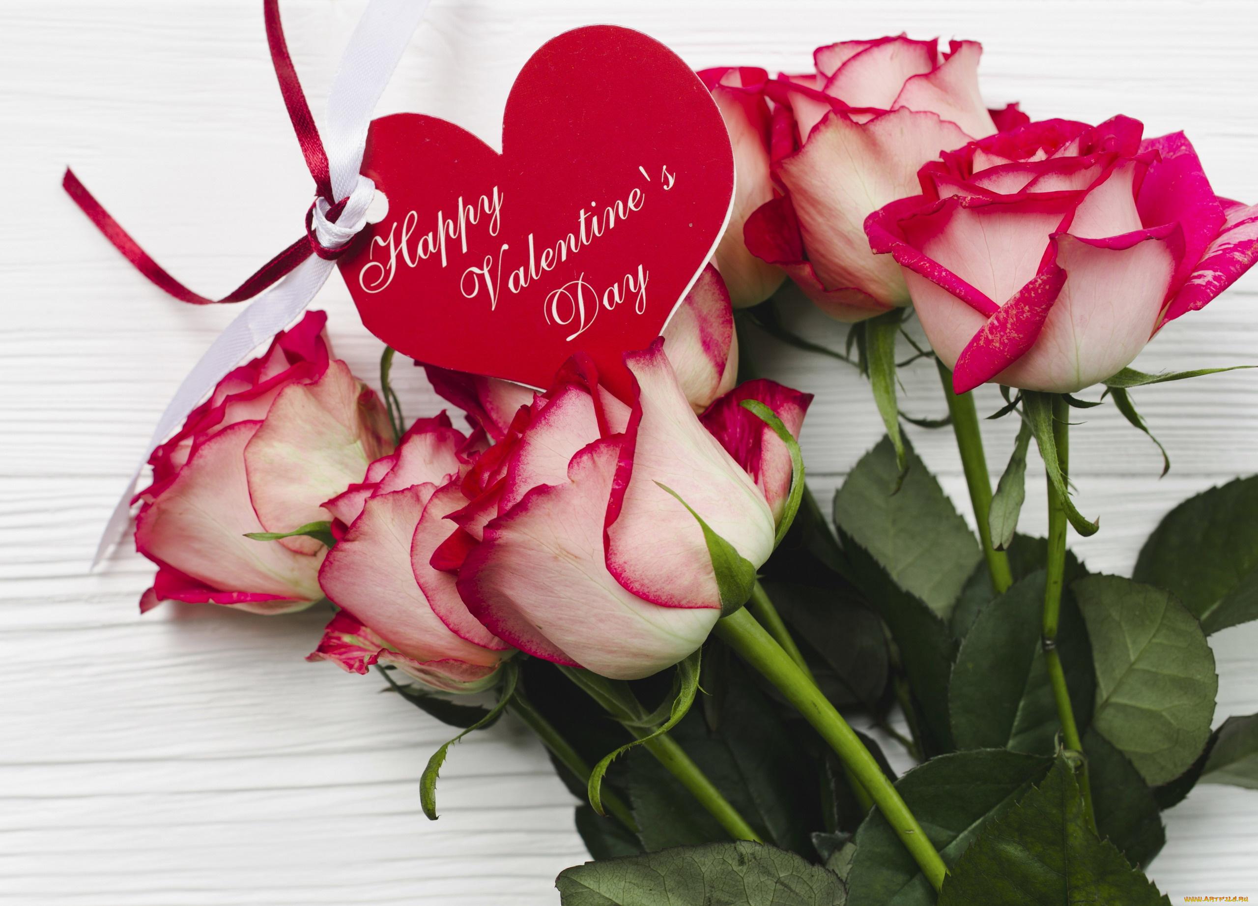 Фон для, открытки розы любимой