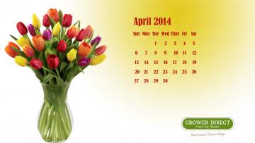обоя календари, цветы, тюльпаны