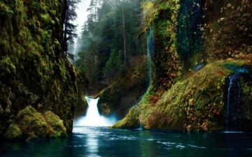 Картинка природа водопады водопад лес ущелье