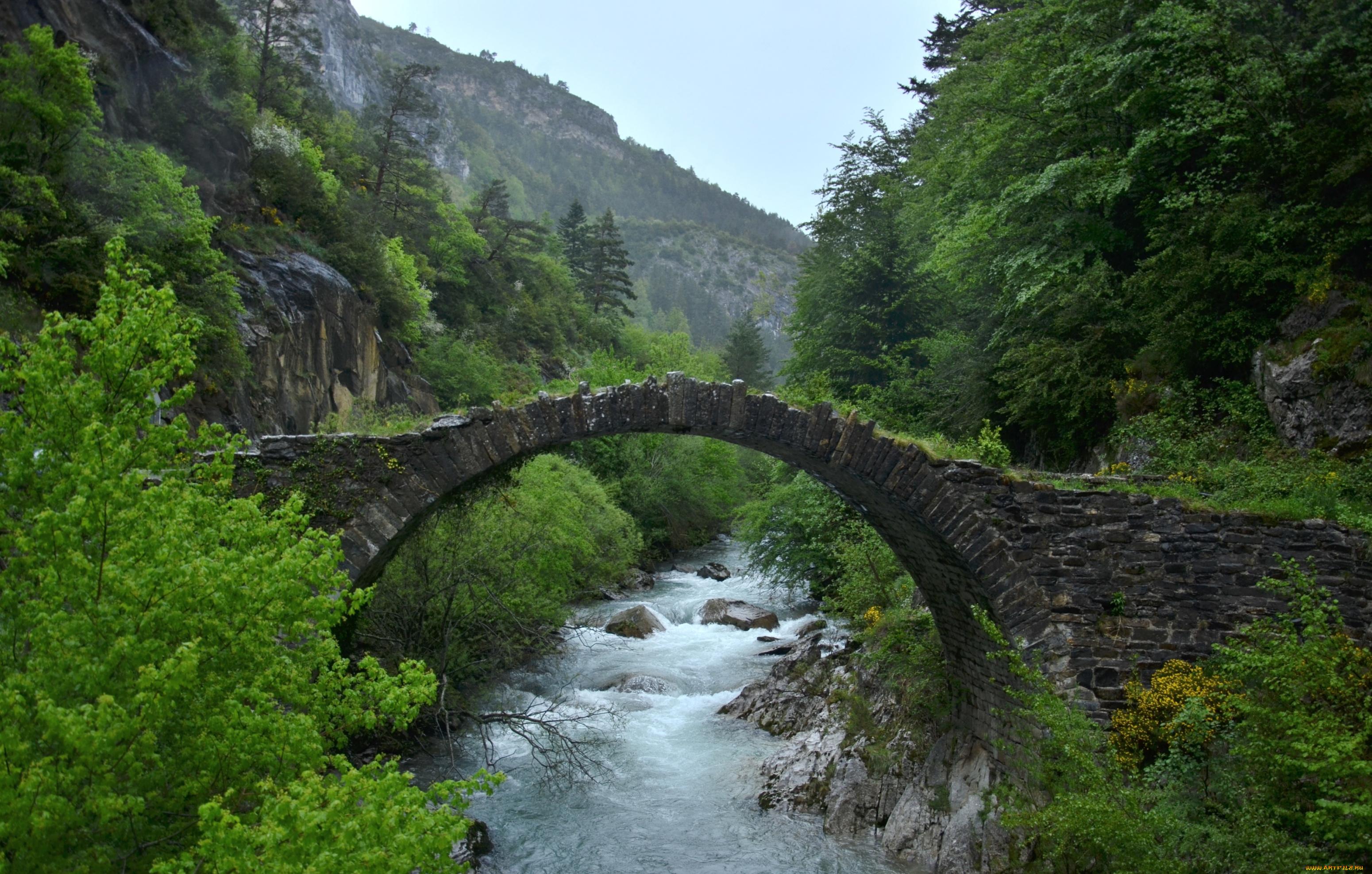 Озерцо мостик лес горы  № 2950046 без смс