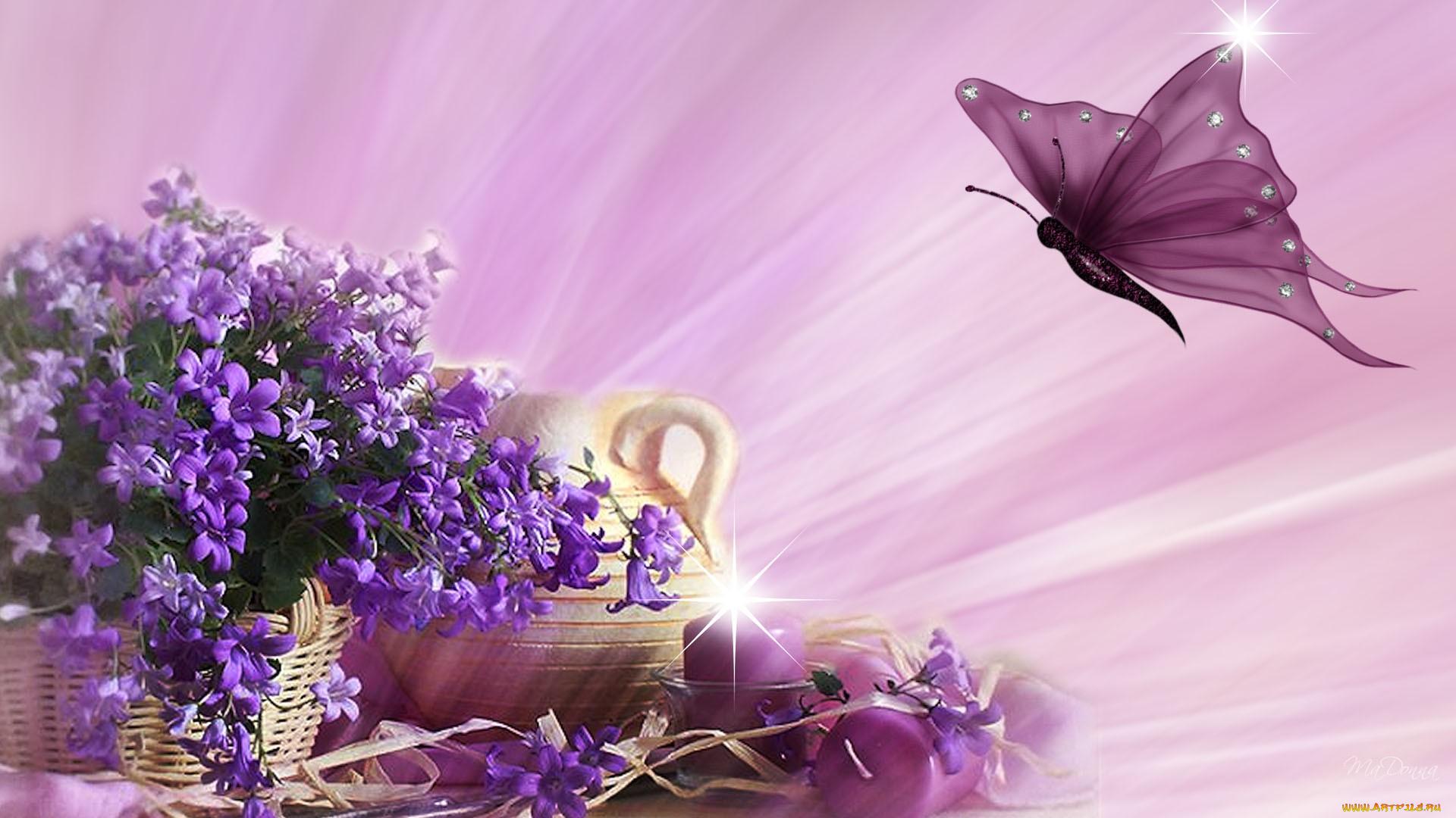 Фон для открытки с фиолетовыми цветами