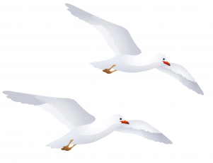 обоя векторная графика, животные , animals, полет, чайки