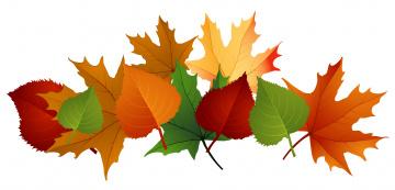 обоя векторная графика, природа , nature, фон, листья, осень