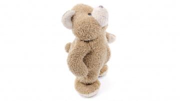 обоя разное, игрушки, медведь, мишка, белый, фон