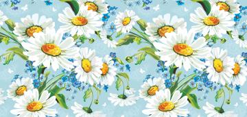 Картинка векторная+графика цветы+ flowers цветы ромашки