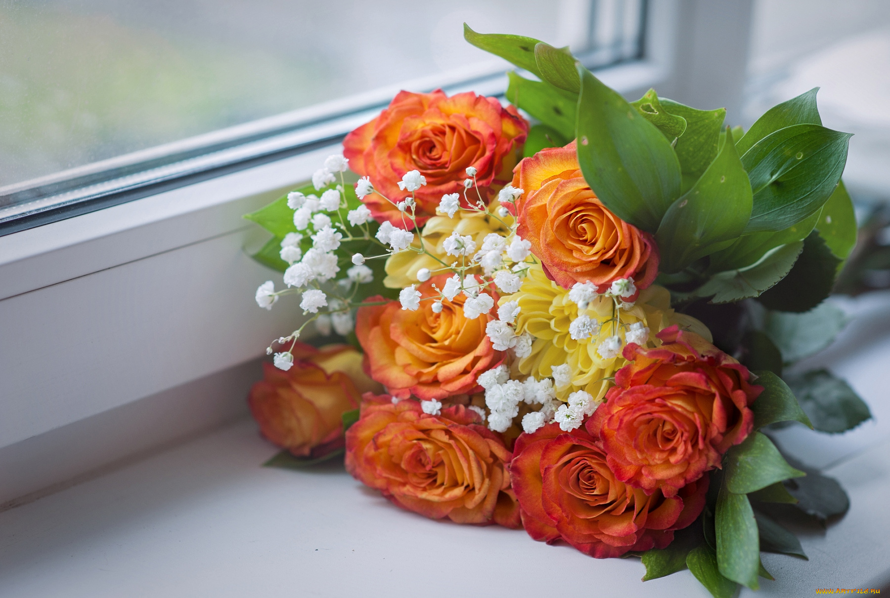 Цветов, букет цветов фото дома