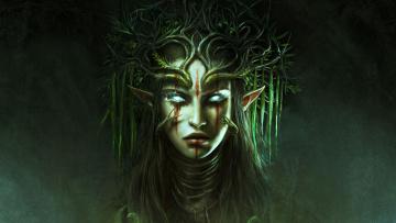 обоя видео игры, divinity,  original sin ii, ролевая, original, sin, ii, action