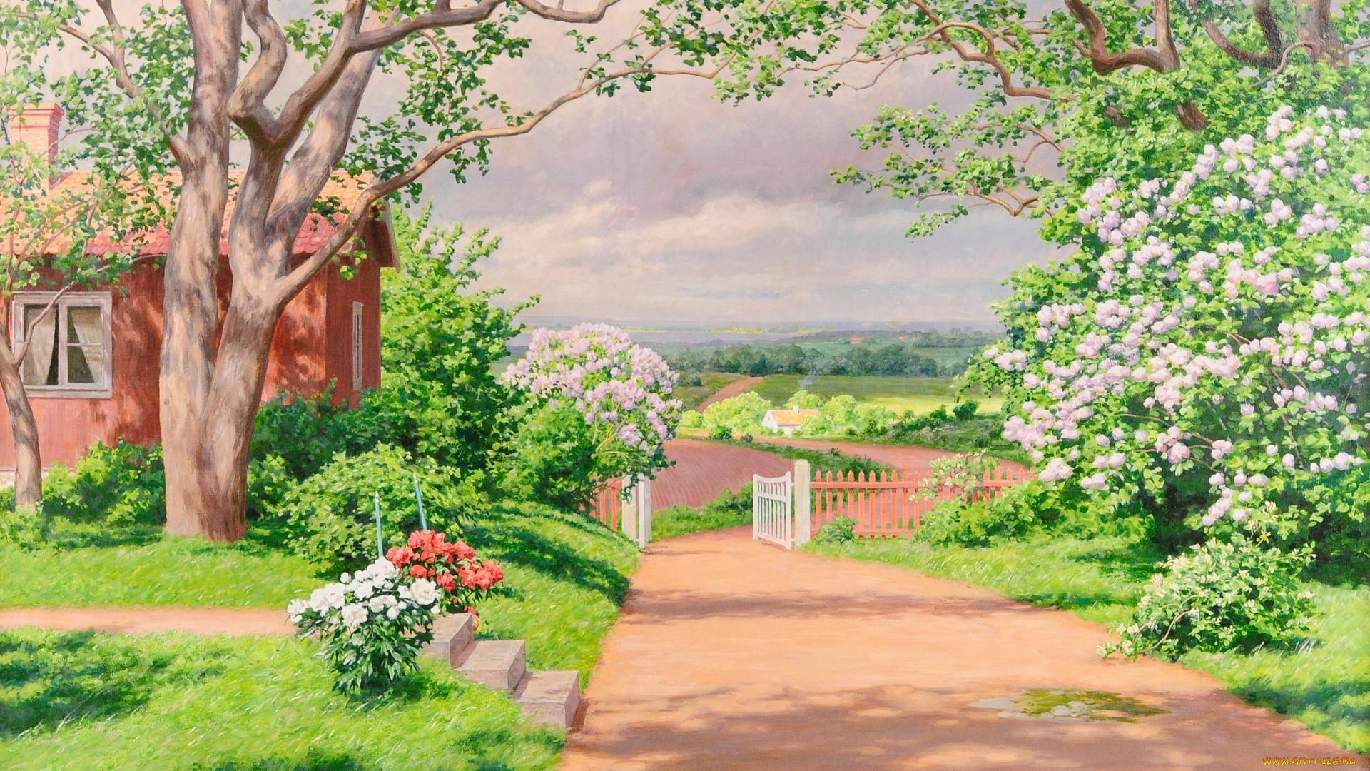 луг сад дворик трава  № 2691609 без смс