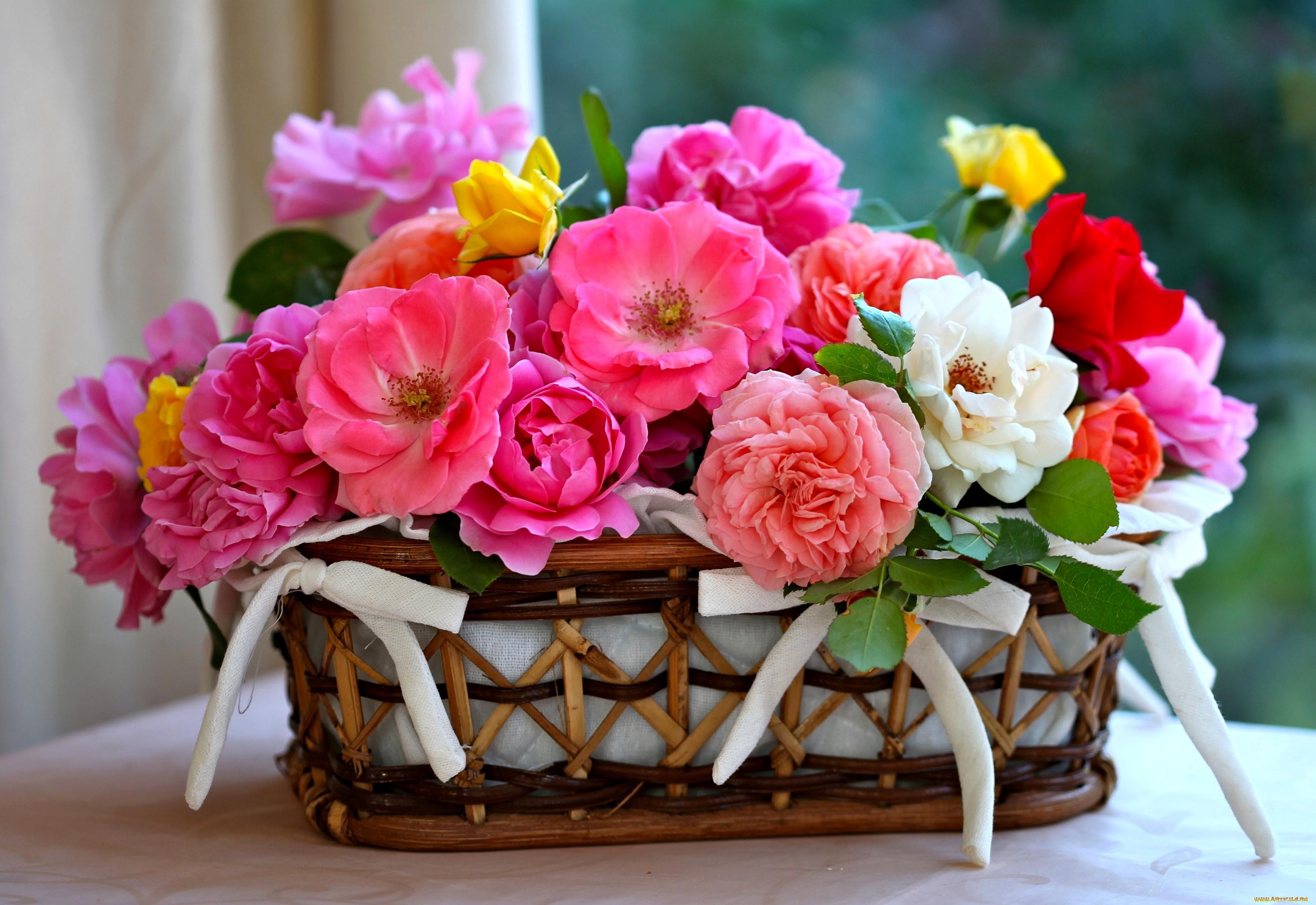 Материал, подарить открытку с днем рождения цветы женщине