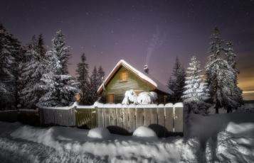 обоя города, - здания,  дома, дома, деревья, снег