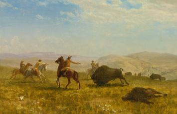 обоя рисованное, живопись, альберт, бирштадт, дикий, запад, ковбой, охота, картина, бизон