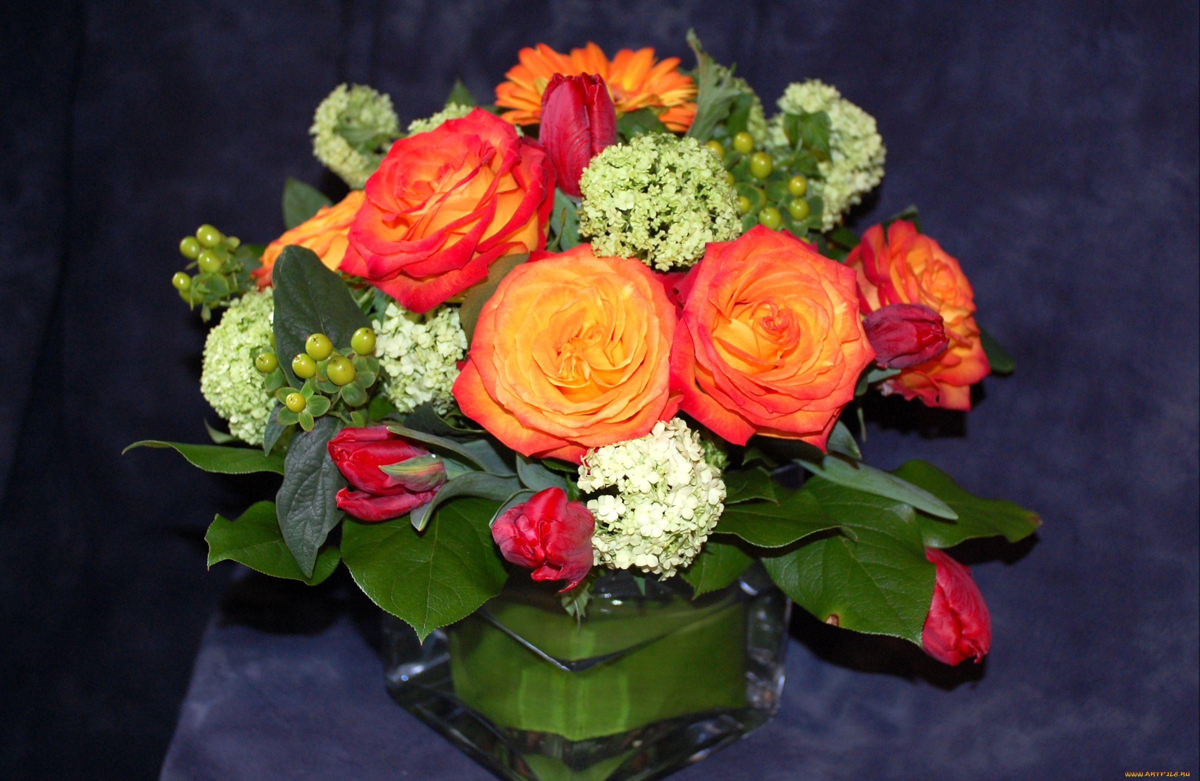 розы, букет, зелень без смс