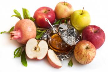 Картинка еда разное мёд яблоки гранат