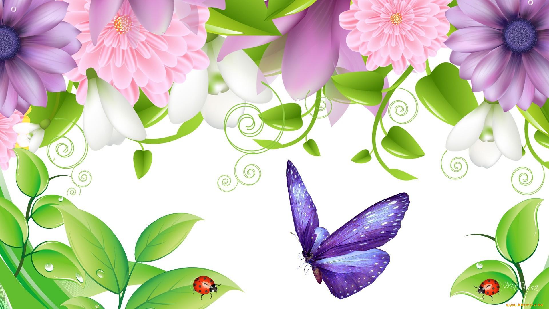 Года, векторные картинки цветы и бабочки