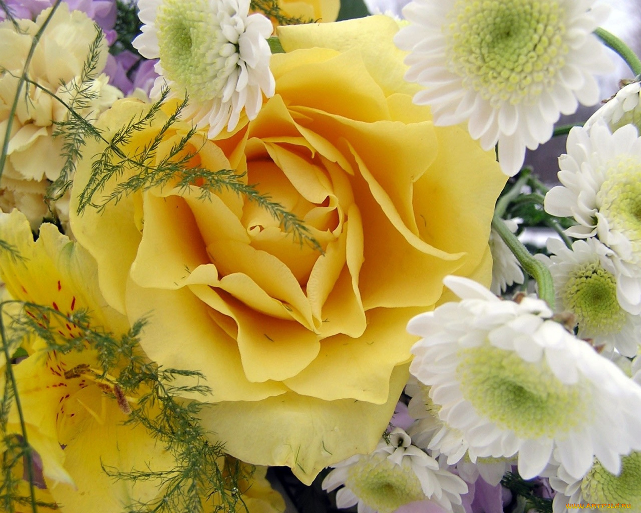 Переписки картинки, желтые цветы открытка
