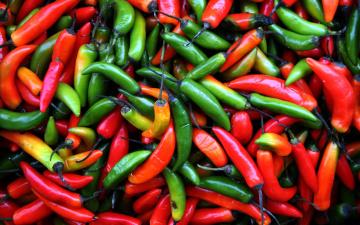 Картинка еда перец красный зеленый оранжевый