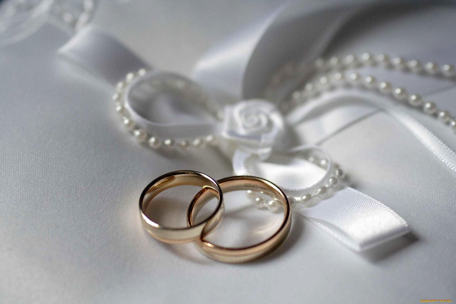 Открытки с кольцами обручальными кольцами