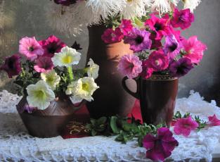 Картинка цветы петунии +калибрахоа букеты