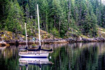 обоя корабли, Яхты, река, лес