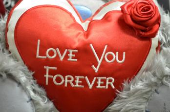 обоя праздничные, день святого валентина,  сердечки,  любовь, надпись, признание, сердце, роза