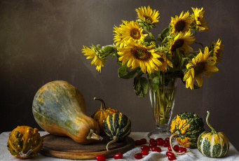Картинка еда тыква подсолнух цветы кизил
