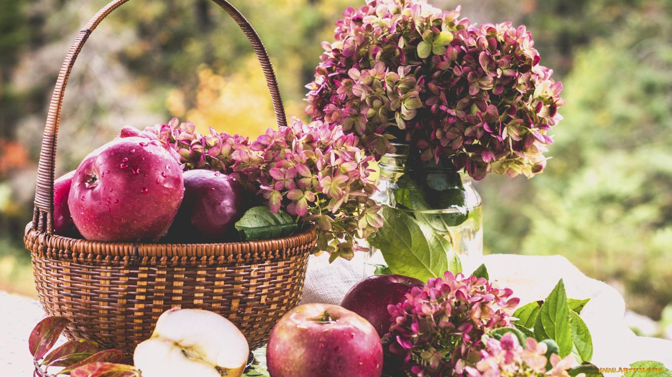 Корзина с яблоками скачать