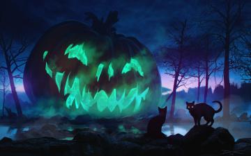обоя праздничные, хэллоуин, коты, ночь, праздник, тыква, halloween