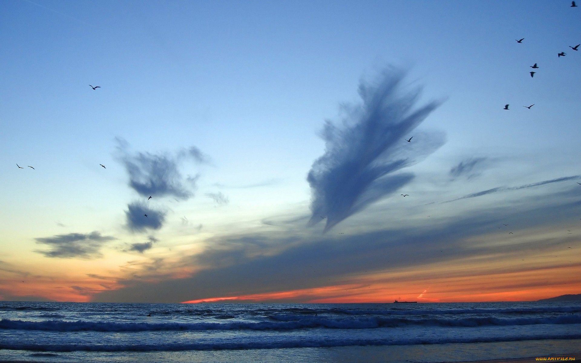 природа море горизонт небо облака nature sea horizon the sky clouds бесплатно